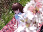 エンジェリックドールと初めてのお花見にお出かけ(2)