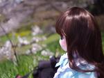 エンジェリックドールと初めてのお花見にお出かけ(1)